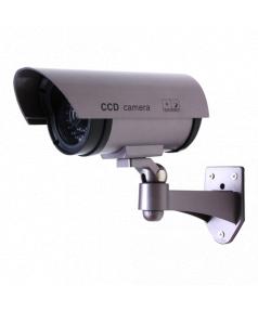 CS809 - Imagen 1