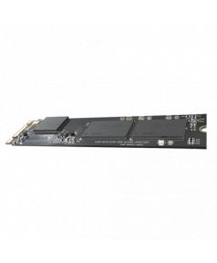 HS-SSD-E100NI-256G-2280